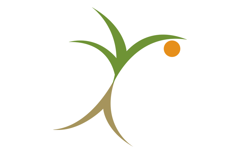 Root To Fruit